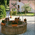 Corte Tommasi - Holiday apartments - Tuscany apartments